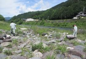 吉田川の河川清掃を実施しました