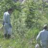 長良川の清掃活動